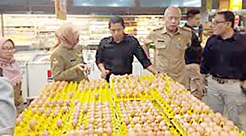 Kementan Laporkan Pemasok Telur hingga Perusahaan Ritel