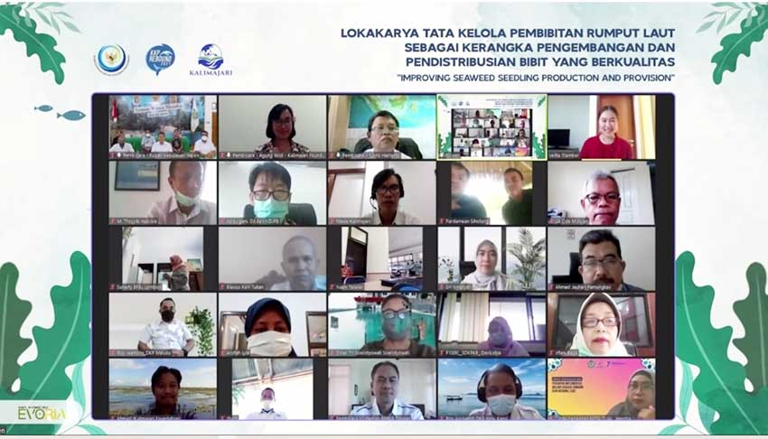 KKP dan Yayasan Kalimajari Siapkan Masyarakat Pesisir Tingkatkan Produktivitas Budidaya Rumput Laut